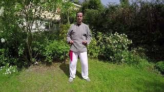 Les 18 mouvements de TAI-CHI QI-GONG 2ème partie - www.franck-shiatsu.fr