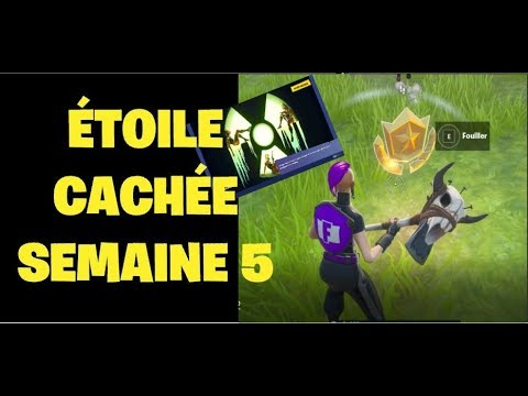 Étoile-cachÉe-semaine-5-Écran-de-chargement-chatastrophique-fortnite