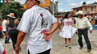 ¡REGRESÓ EL HUAPANGO EN XILITLA! ¡REGRESÓ DON CELSO! - LA SOLEDAD - TRÍO FAMILIA HUASTECA