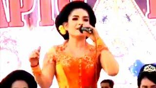 Download Tatik Wulandari - Sarung Jagung - Sapto Bayu [OFFICIAL]
