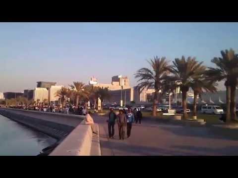 Dove in Qatar,cornich