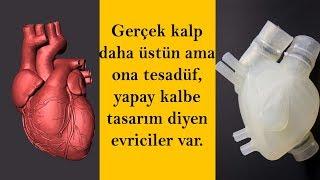 İnsan Kalbi ve Yapay Kalp Arasındaki Büyük Fark