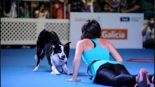 Coreografía Dog Dancing Argentina  La rural Expo