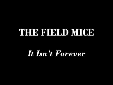 The Field Mice - It Isn't Forever