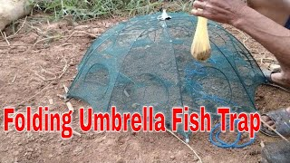 Umbrella Fish Trap | Catch Fish Easy by Net Fishing in River