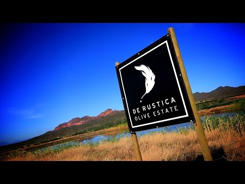 De Rustica Olive Oil South Africa - Africa Travel Channel