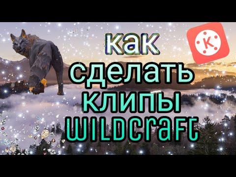 Как сделать клип Wildcraft/ ваилдкрафт