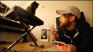 PLAYING GAMES WITH MY CAT!