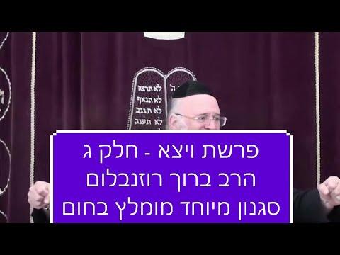 הרב רוזנבלום ויצא - שיעור ברמה גבוהה על פרשת ויצא 3 הרב רוזנבלום rabbi rosenblum parashat vayetse