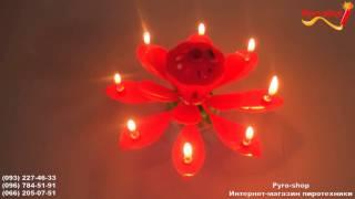 Музыкальная свеча, цветок лотоса, большая вращающаяся(, 2016-02-18T09:05:05.000Z)