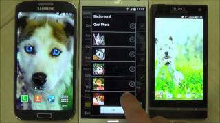 Dogs live wallpaper for android phones and tablets