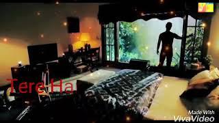Hayat and zaki (Ye Raha Dil )Lyrics
