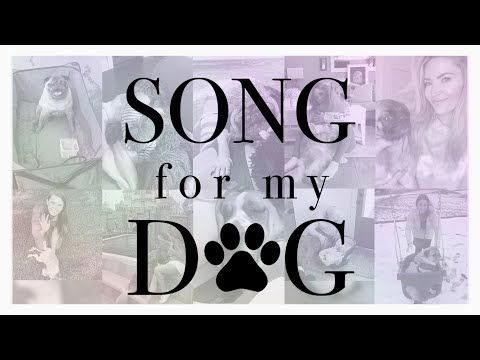 SONG FOR MY DOG  Music Video
