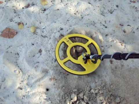 Whites beachhunter 300 - купить металлоискатель: цены, отзыв.