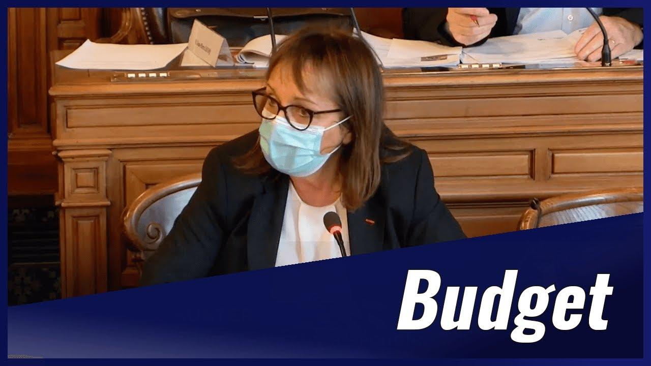 Intervention en Conseil de Paris sur la police municipale sous dotée