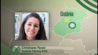 Ação preventiva contra o mal da vaca louca é realizado em Goiás
