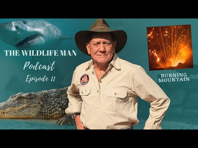 The Wildlife Man Podcast -  Episode 11 - Burning Mountain