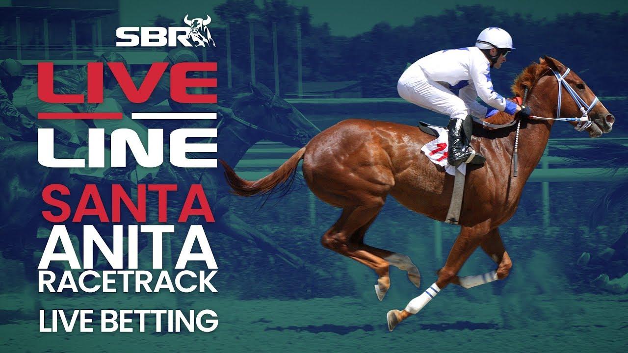 Live betting horse racing betting action nfl
