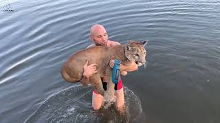 Let's go swimming! Puma Messi on the river