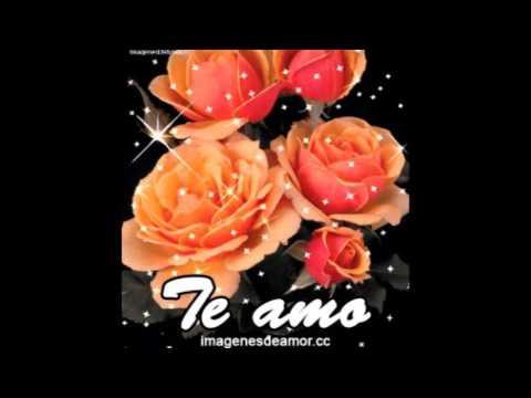 13 Imagenes De Rosas Gif Con Frases Para Enamorados Youtube
