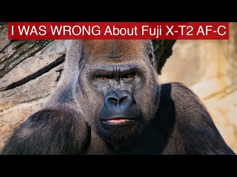 I WAS WRONG About Fuji X-T2 AF-C Tracking - My Video 8 Months Ago