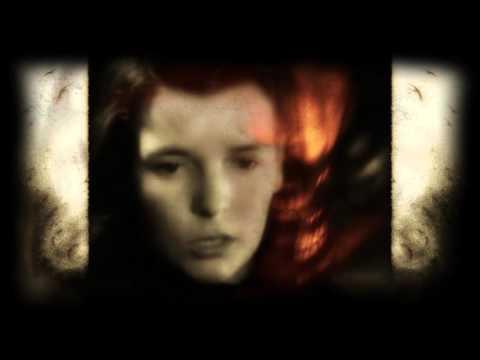 Diary Of Dreams ~ SinnFlut