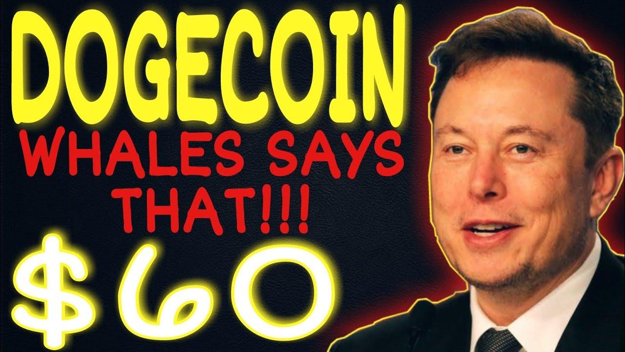 """Elon Musk's New Tweet: """"DOGECOIN WILL HIT $100""""   Dogecoin ..."""