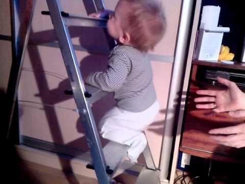 В нашем интернет-магазине можно недорого купить профессиональные стремянки и бытовые лестницы с доставкой по москве.