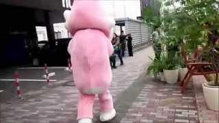 ピンクのゴリラの着ぐるみの跡を追ってみました。 中はやはり・・・。 ...