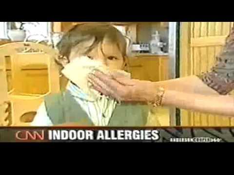 CNN Report on indoor allergies
