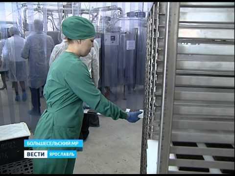 Ярославские депутаты посетили шоколадную фабрику в Варегово