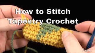 Tapestry Crochet - How to Crochet