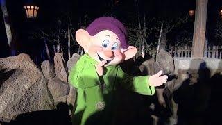 NIGHT Seven Dwarfs Mine Train Media Event - On Ride Views & Dwarf Meet & Greets