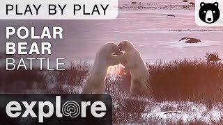 Steve Amstrup, Geoff York, Andrew Derocher and BJ Kischhoffer - Polar Bear Play By Play thumbnail