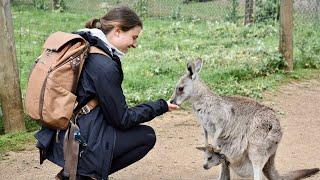 AUSTRALIA SOLO TRAVEL | Melbourne + Sydney + Byron Bay + Port Douglas