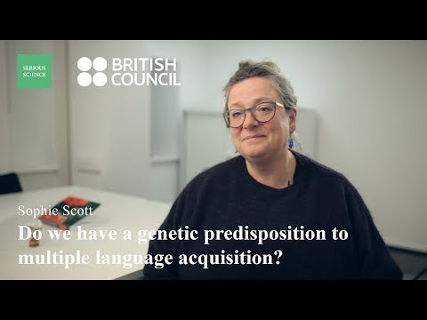 Speech Processing Sophie Scott