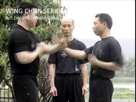 Wing Chun Serie Par Mai Yao Ming (Ref.DW-053)
