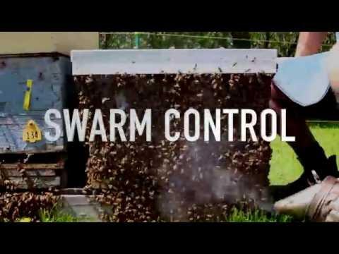 Swarm Control