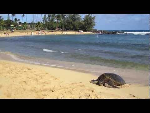 Hideaway Cove presents the nearby beaches of Poipu!