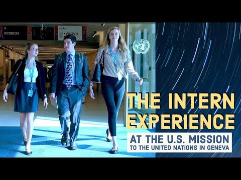 The Intern Experience
