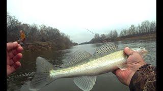 Ловля СУДАКА на ОКЕ Рыбалка на Судака в конце октября 2019