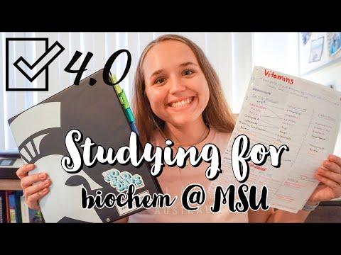 How I studied