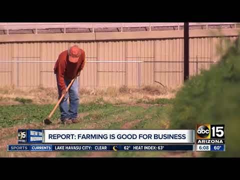 Farming is huge for Arizona's economy
