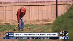 Farming is huge for Arizona's economy