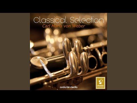 Bassoon Concerto in F Major, Op. 75, J. 127: I. Allegro ma non troppo