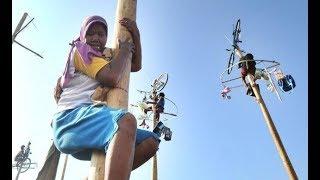 Video Panjat Pinang Lucu Proklamasi 17 Agustus - HUT RI Ke 70