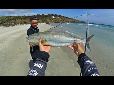 Chasing Schools Of Australian Salmon From A Pristine Beach On Kangaroo Island