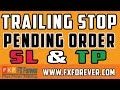 Pending Order | TP & SL | Trailing Stop - EXPLAINED in URDU