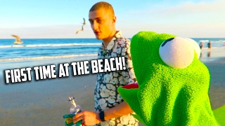 Kermit the Frog goes to the Beach!