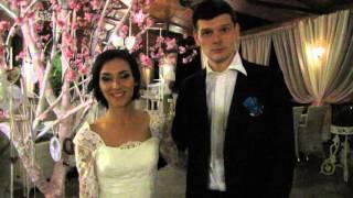 Тамада на свадьбу киев цены